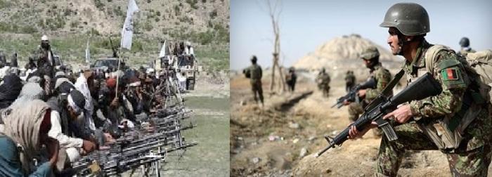 طالبان، عسکر